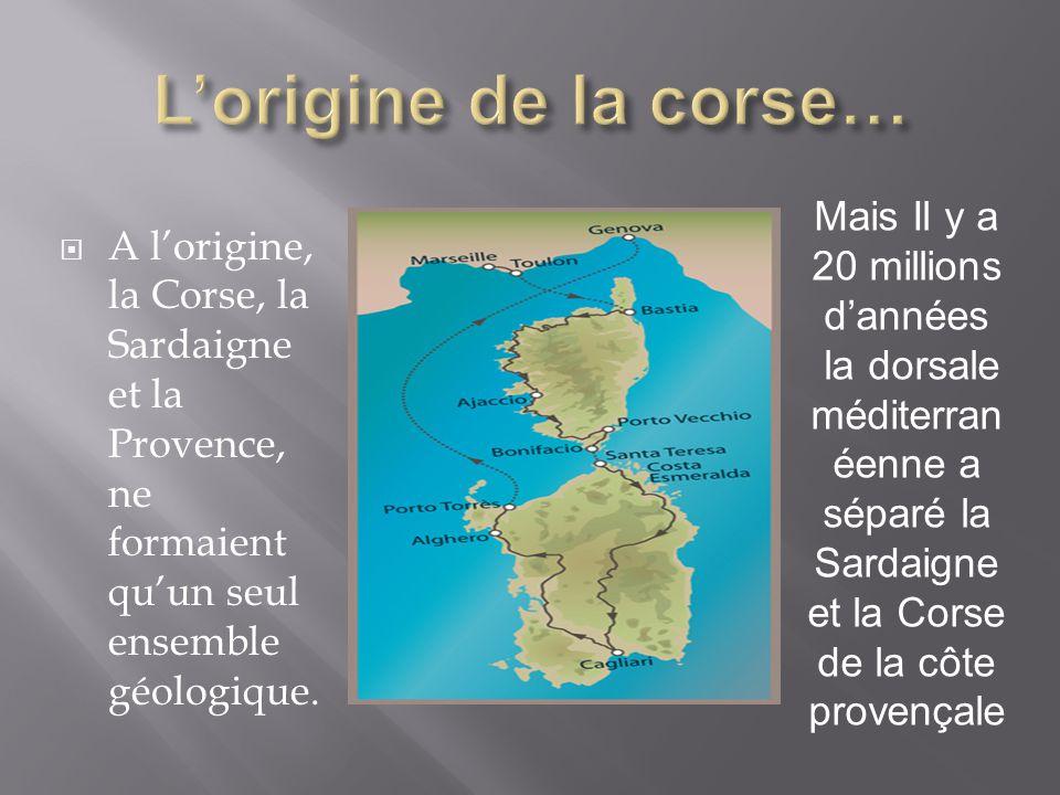 L'origine de la corse… Mais Il y a 20 millions d'années la dorsale méditerranéenne a séparé la Sardaigne et la Corse de la côte provençale.