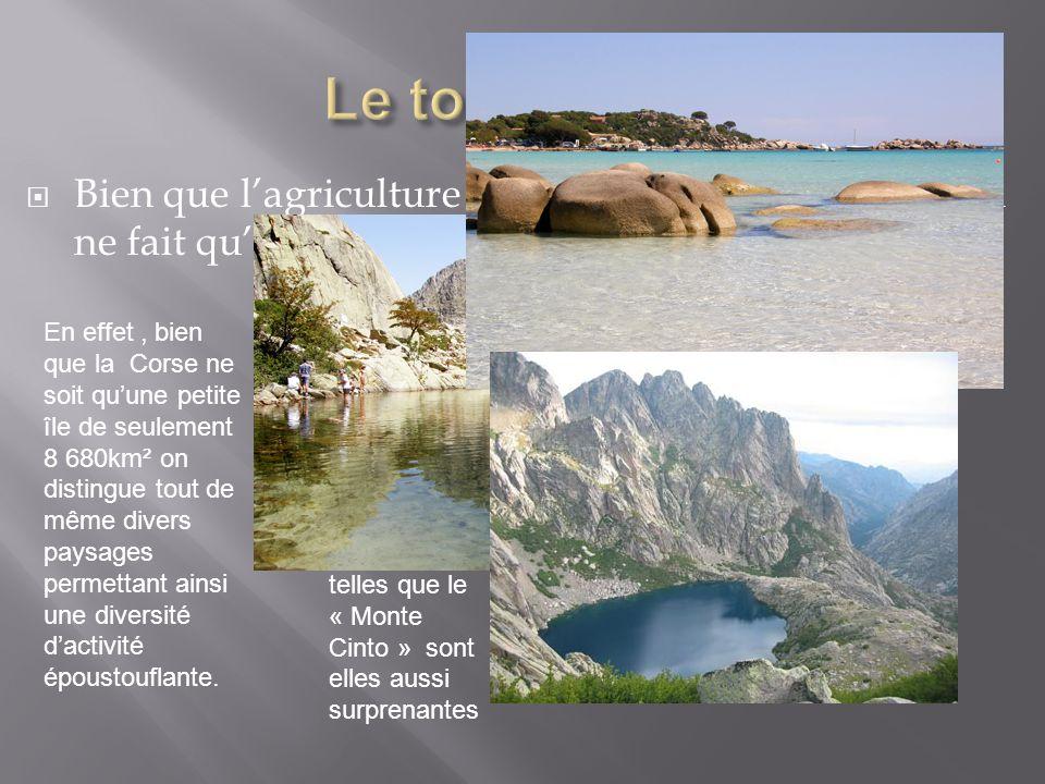 Le tourisme… Bien que l'agriculture Corse se perd, le tourisme, lui ne fait qu'empirer d'année en année…