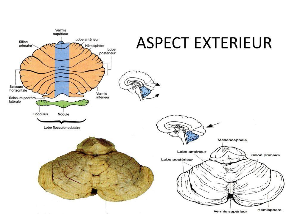 ASPECT EXTERIEUR