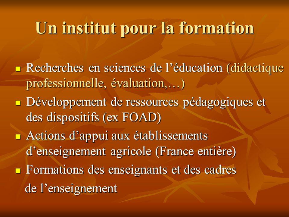 Un institut pour la formation