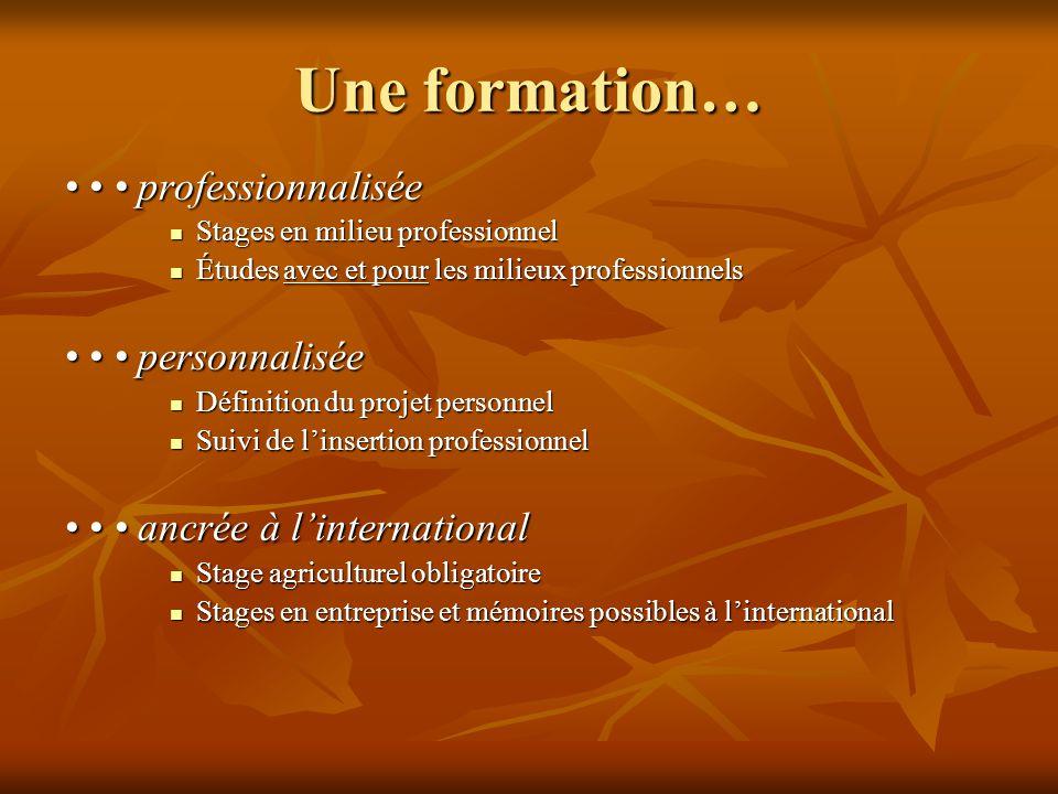 Une formation… • • • professionnalisée • • • personnalisée
