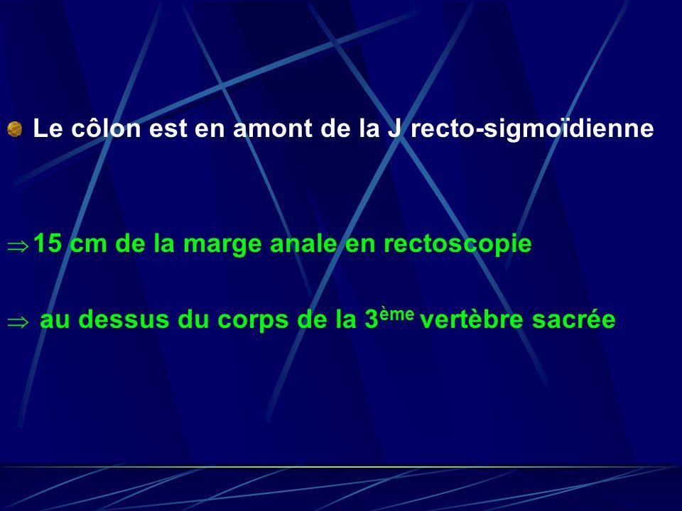 Le côlon est en amont de la J recto-sigmoïdienne