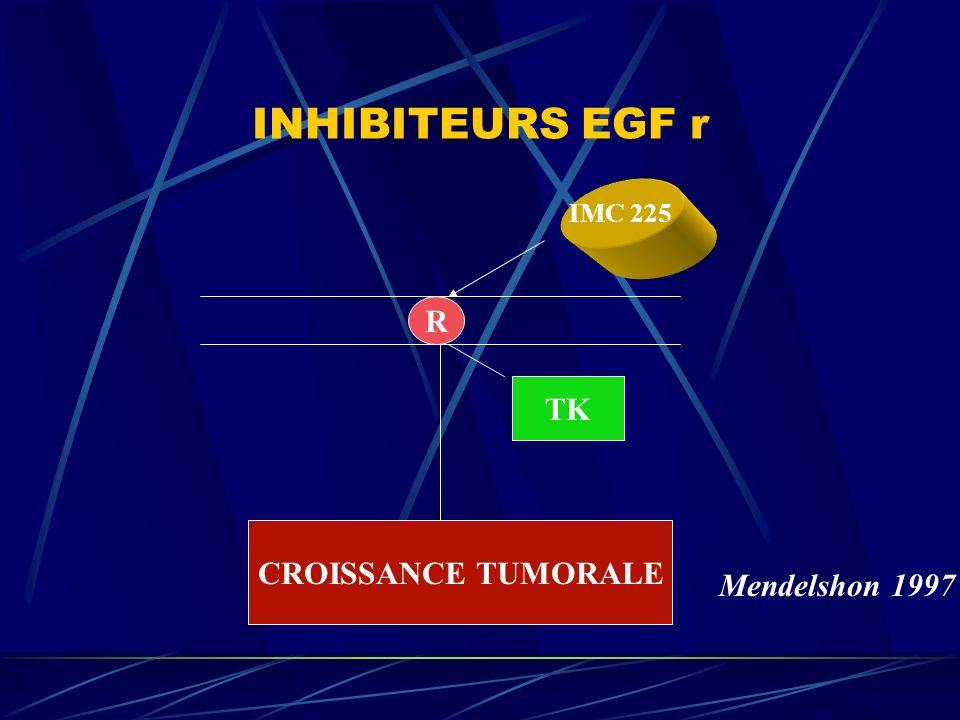 INHIBITEURS EGF r IMC 225 R TK CROISSANCE TUMORALE Mendelshon 1997