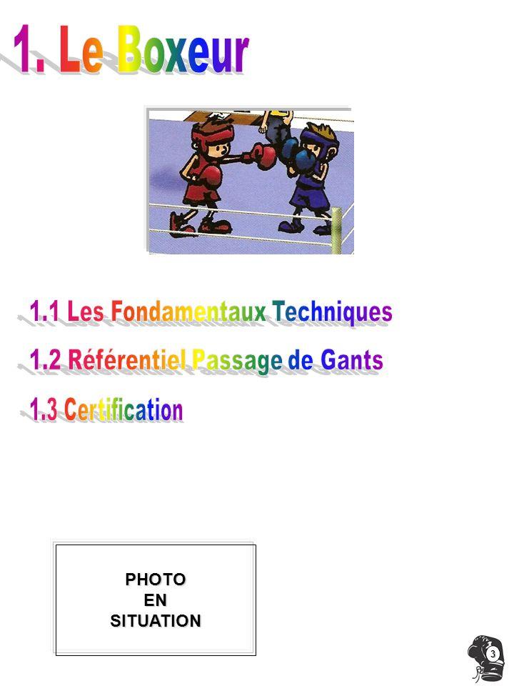 1. Le Boxeur 1.1 Les Fondamentaux Techniques
