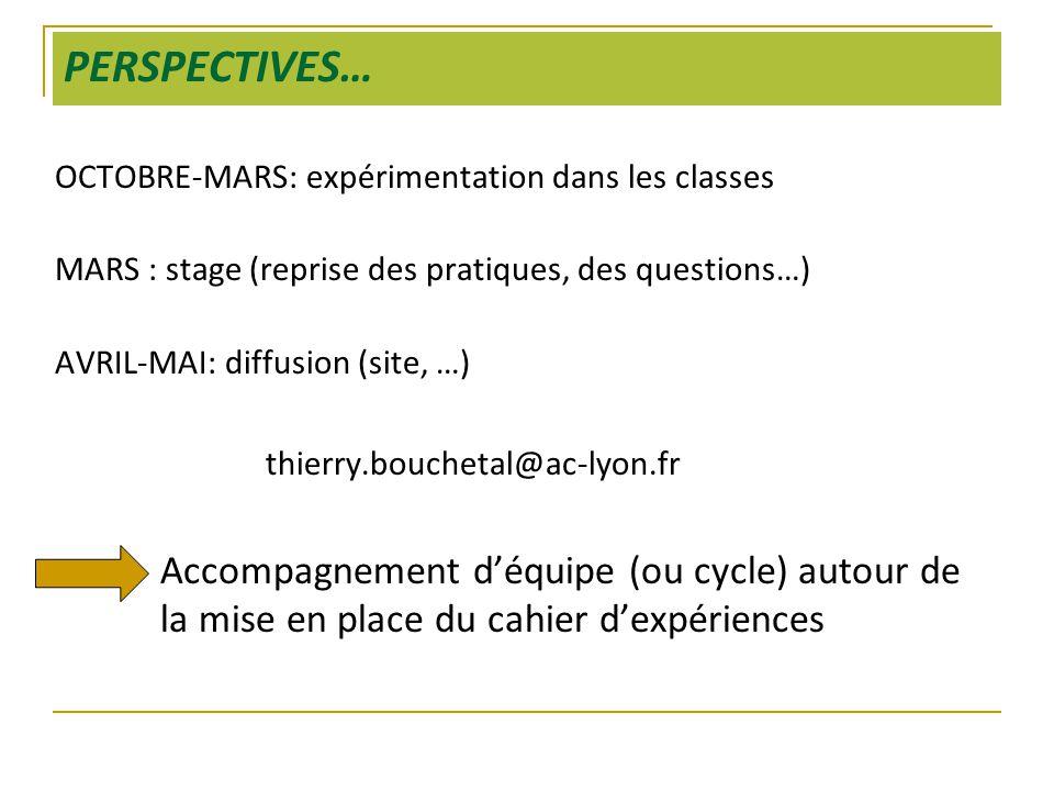 PERSPECTIVES… OCTOBRE-MARS: expérimentation dans les classes. MARS : stage (reprise des pratiques, des questions…)