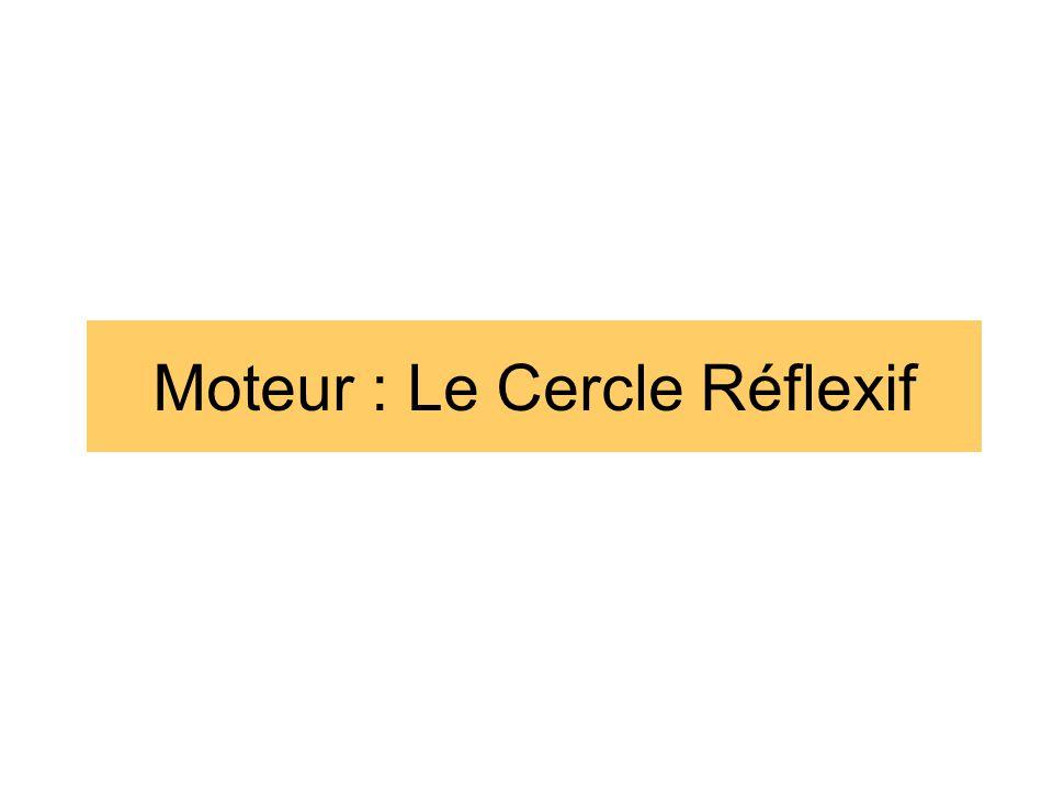 Moteur : Le Cercle Réflexif