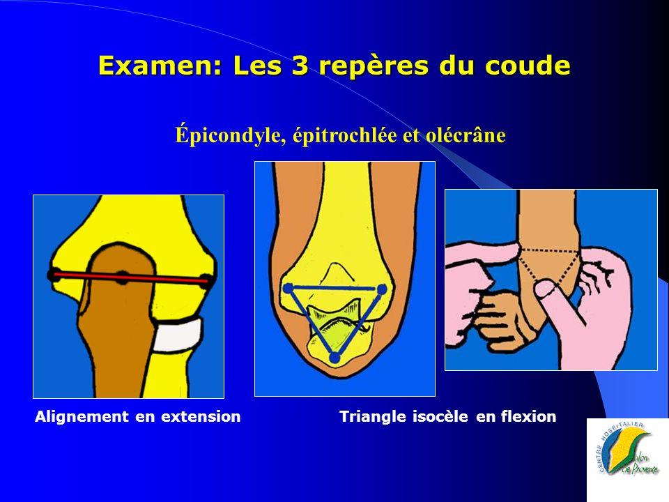 Examen: Les 3 repères du coude