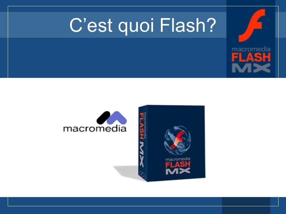 C'est quoi Flash C'est quoi Flash
