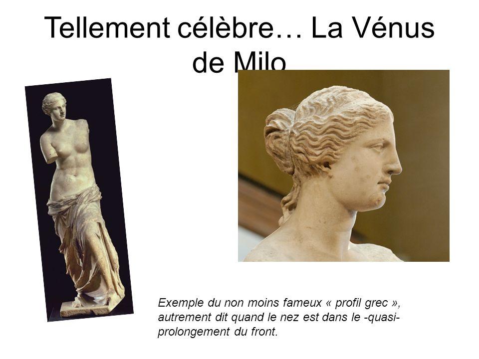 Tellement célèbre… La Vénus de Milo