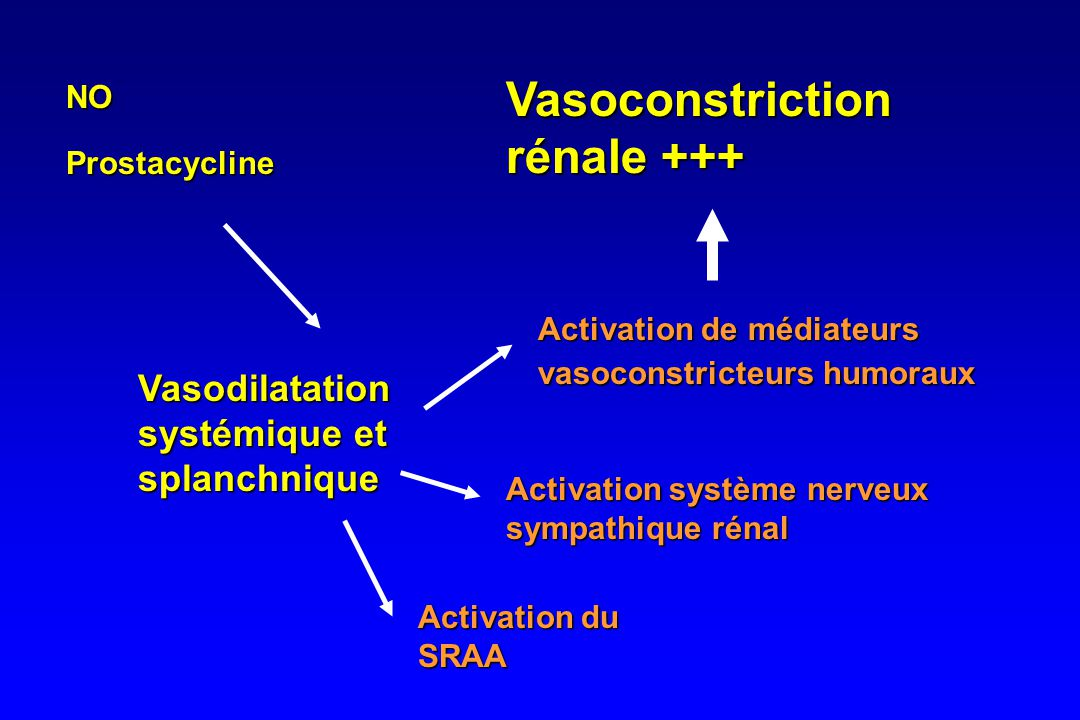 Vasoconstriction rénale +++