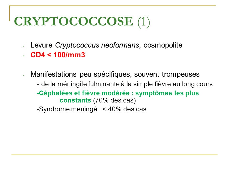 CRYPTOCOCCOSE (1) Levure Cryptococcus neoformans, cosmopolite