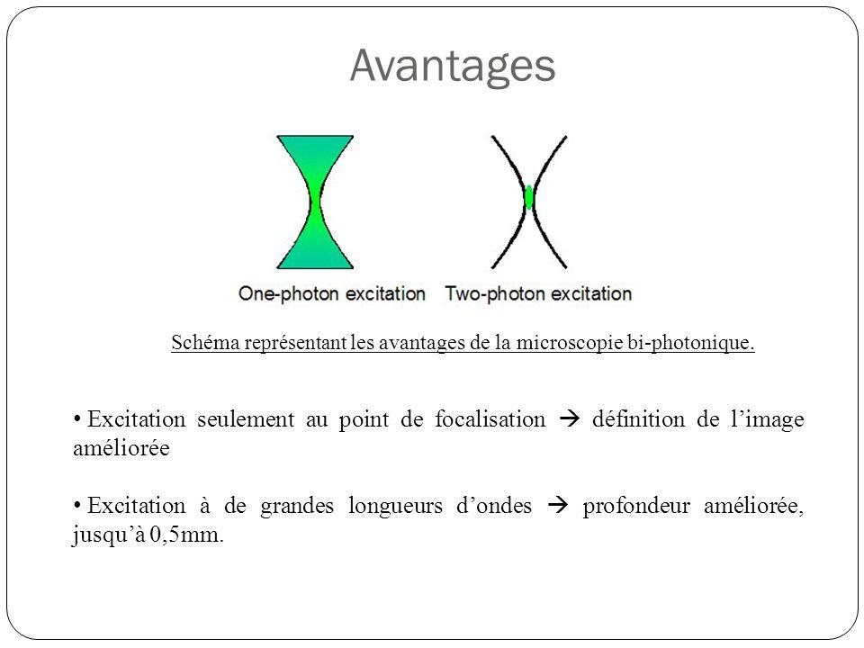 Schéma représentant les avantages de la microscopie bi-photonique.