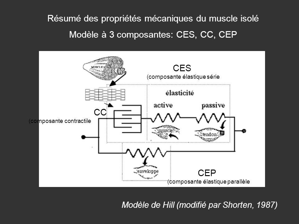 Résumé des propriétés mécaniques du muscle isolé