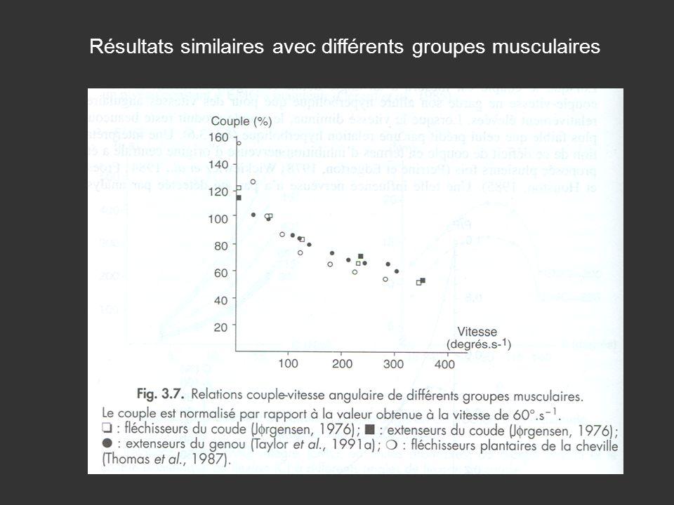 Résultats similaires avec différents groupes musculaires