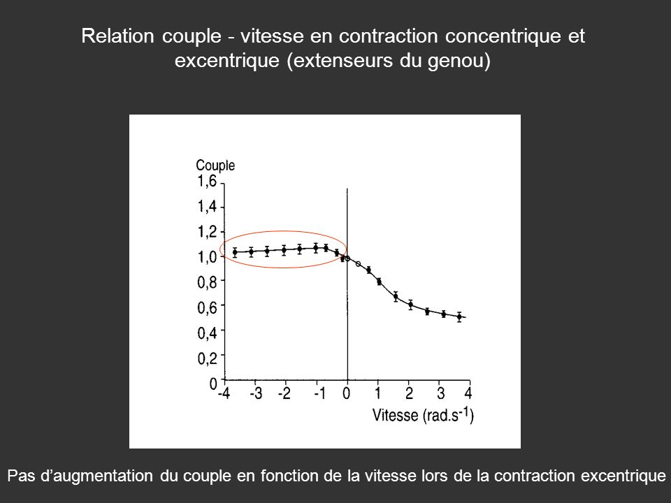 Relation couple - vitesse en contraction concentrique et excentrique (extenseurs du genou)