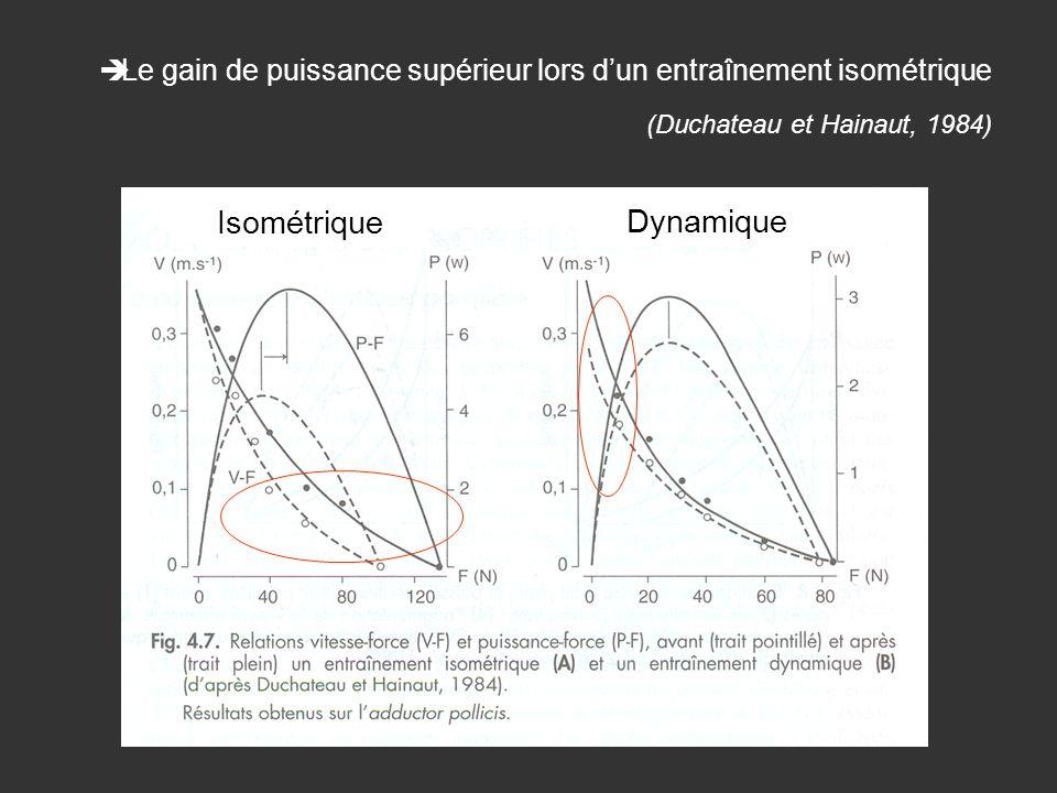 Isométrique Dynamique