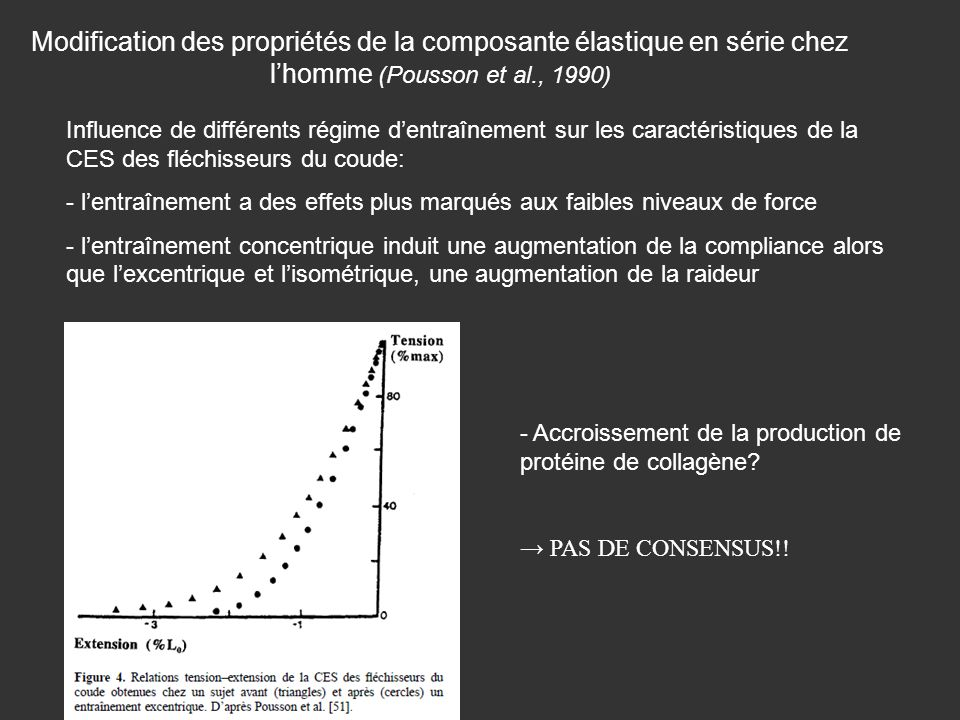 Modification des propriétés de la composante élastique en série chez l'homme (Pousson et al., 1990)