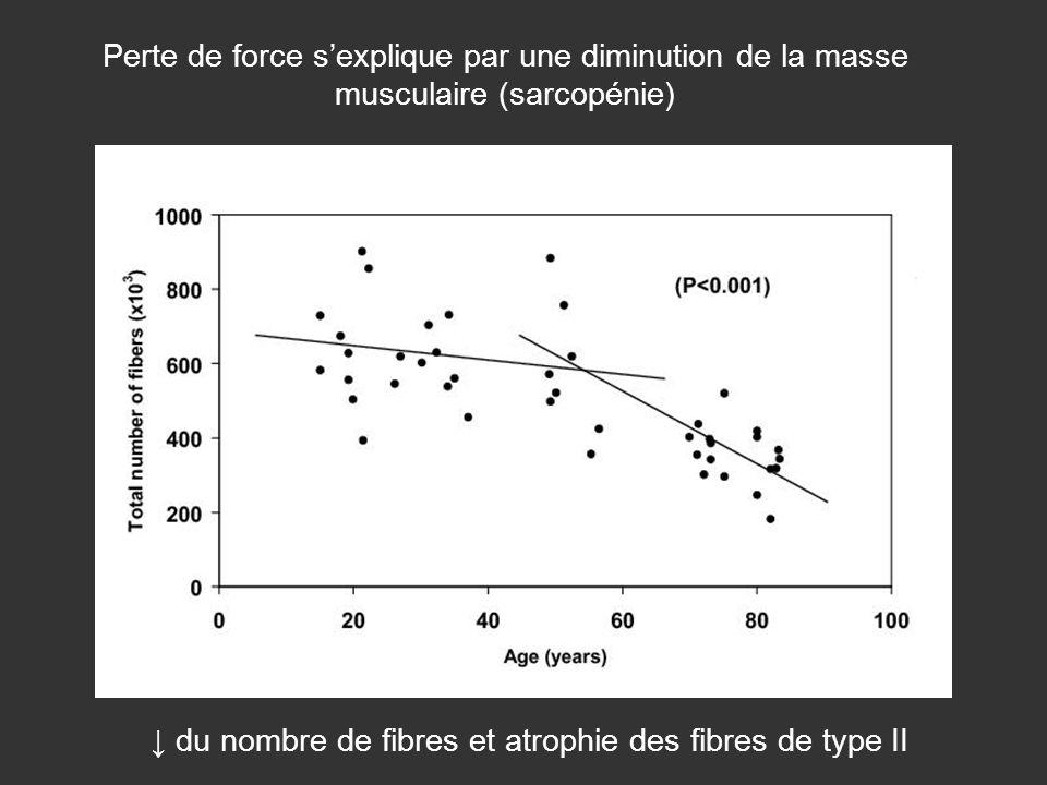 ↓ du nombre de fibres et atrophie des fibres de type II