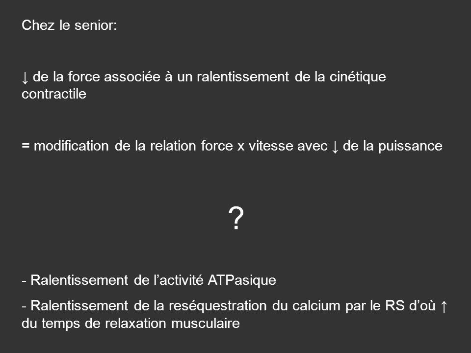 Chez le senior: ↓ de la force associée à un ralentissement de la cinétique contractile.