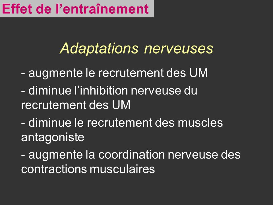 Adaptations nerveuses