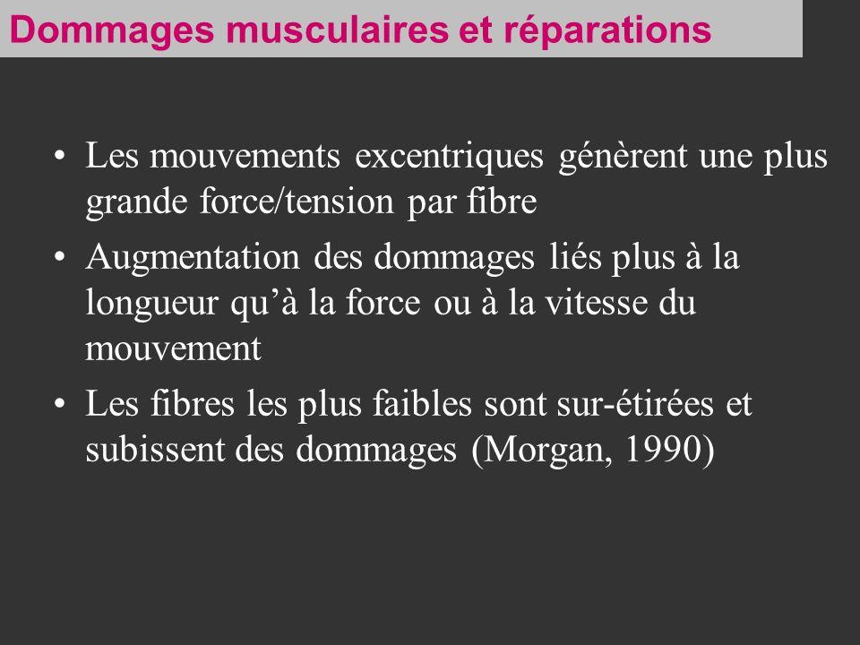 Dommages musculaires et réparations
