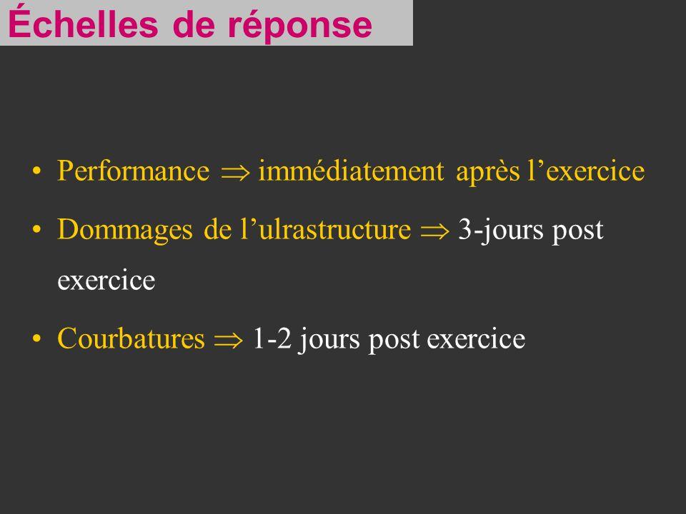 Échelles de réponse Performance  immédiatement après l'exercice