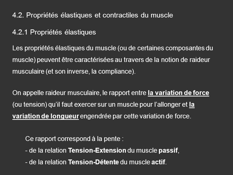 4.2. Propriétés élastiques et contractiles du muscle