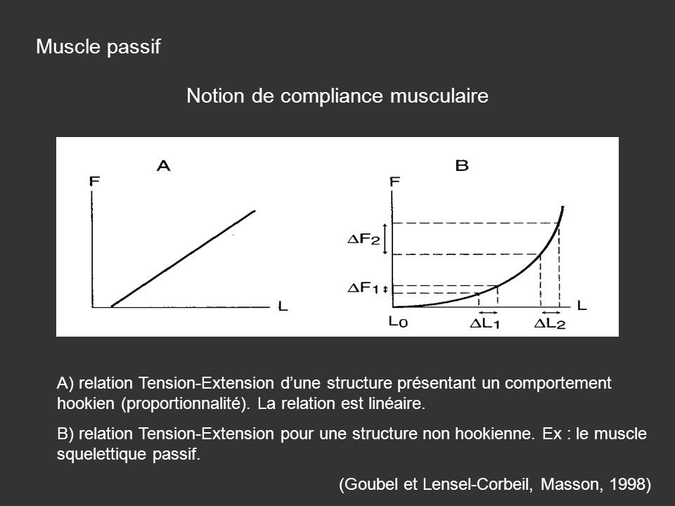 Notion de compliance musculaire