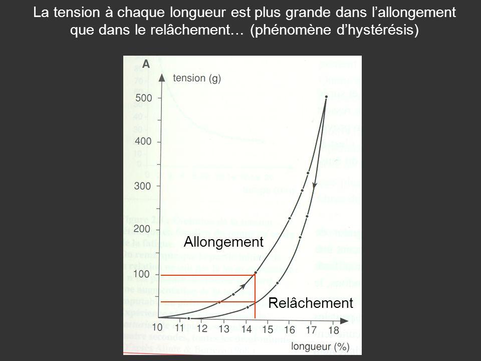 La tension à chaque longueur est plus grande dans l'allongement que dans le relâchement… (phénomène d'hystérésis)