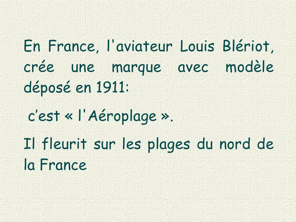 En France, l aviateur Louis Blériot, crée une marque avec modèle déposé en 1911: