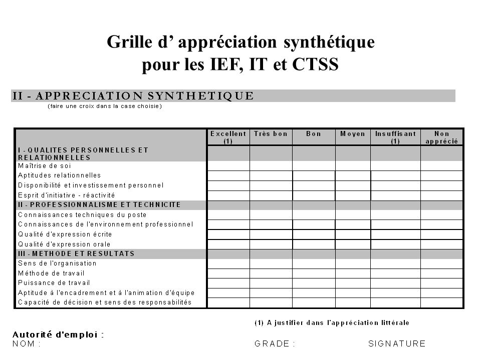 Grille d' appréciation synthétique pour les IEF, IT et CTSS