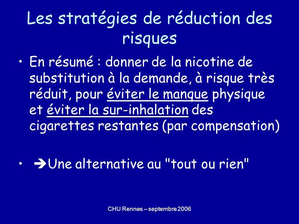 Les stratégies de réduction des risques