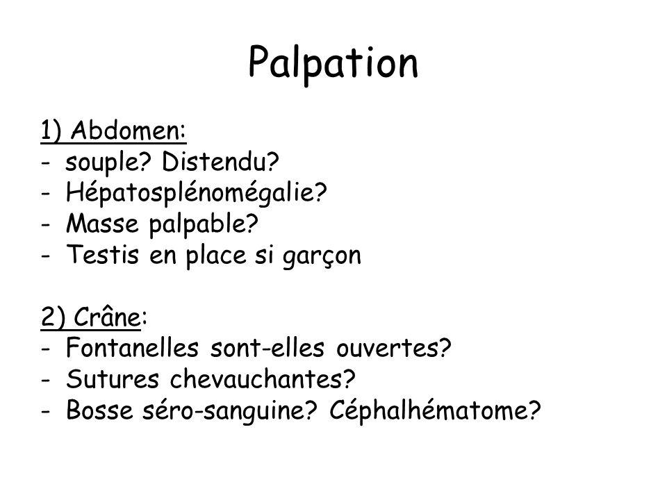 Palpation 1) Abdomen: souple Distendu Hépatosplénomégalie