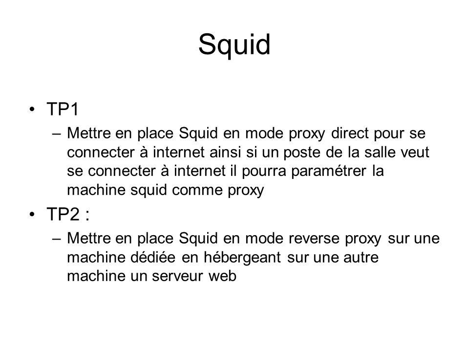 Squid TP1.