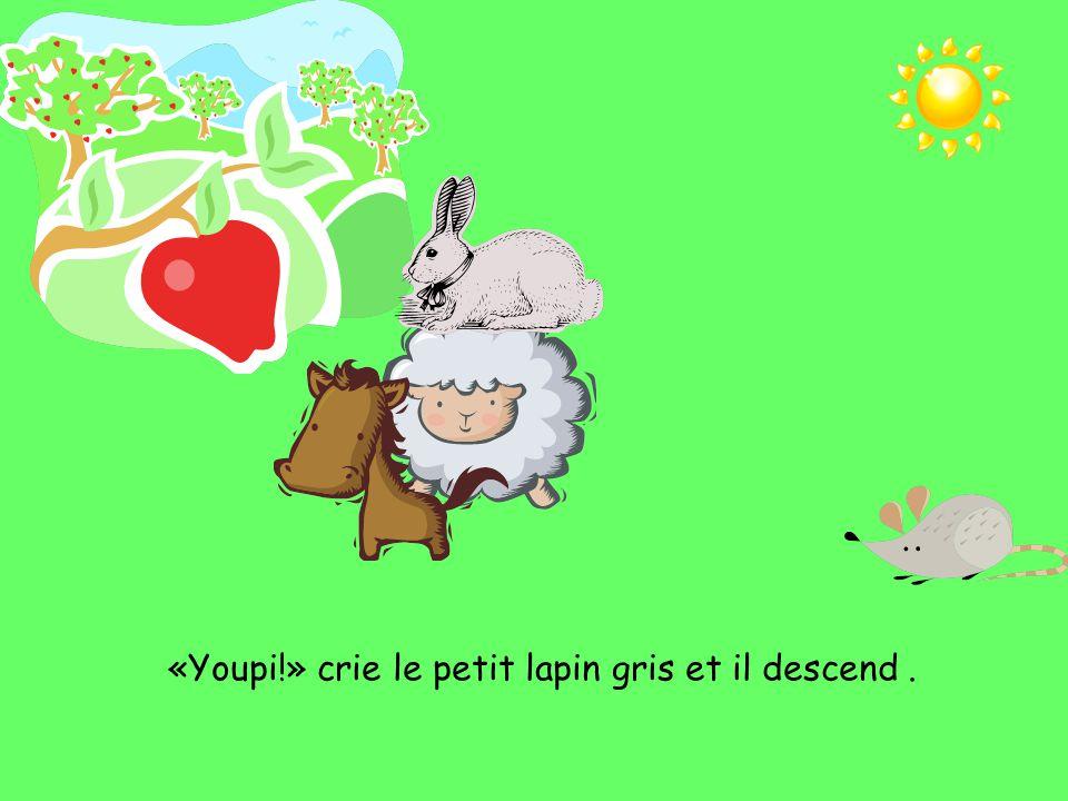 «Youpi!» crie le petit lapin gris et il descend .