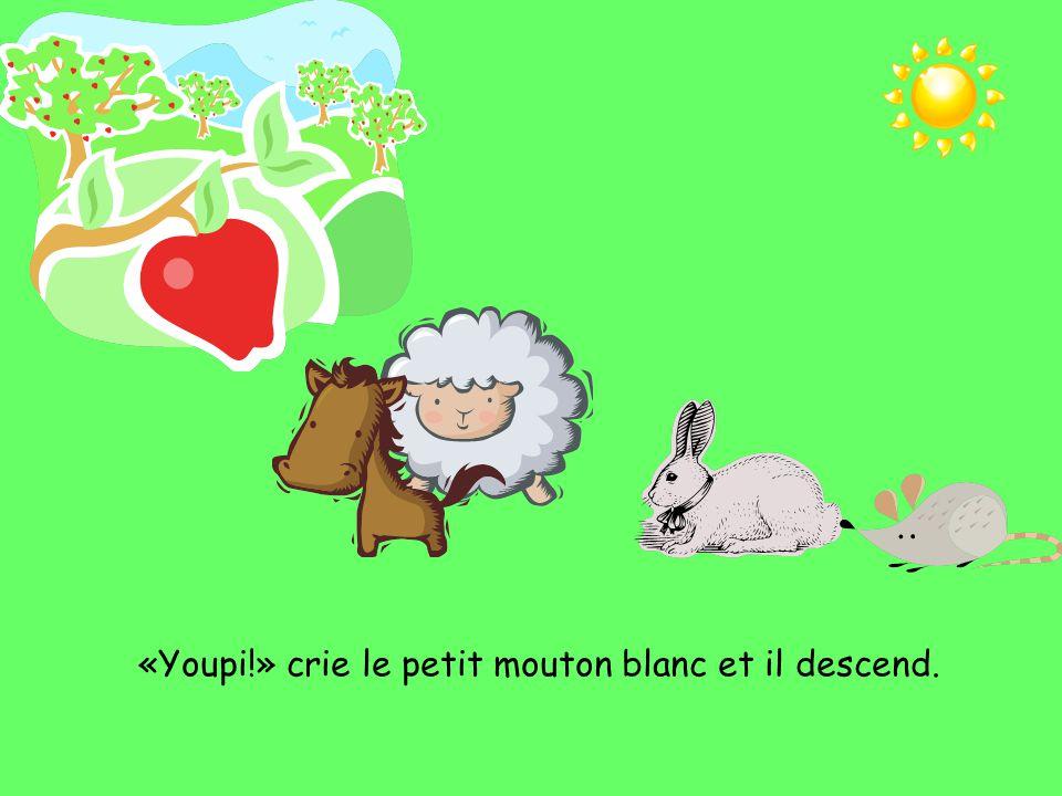 «Youpi!» crie le petit mouton blanc et il descend.