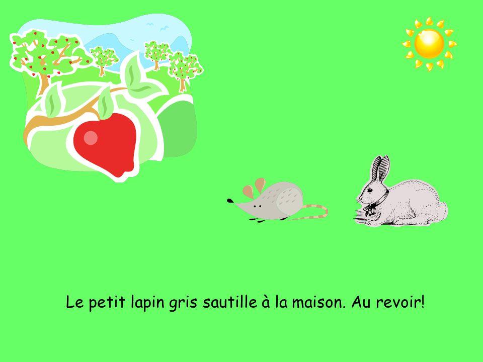 Le petit lapin gris sautille à la maison. Au revoir!