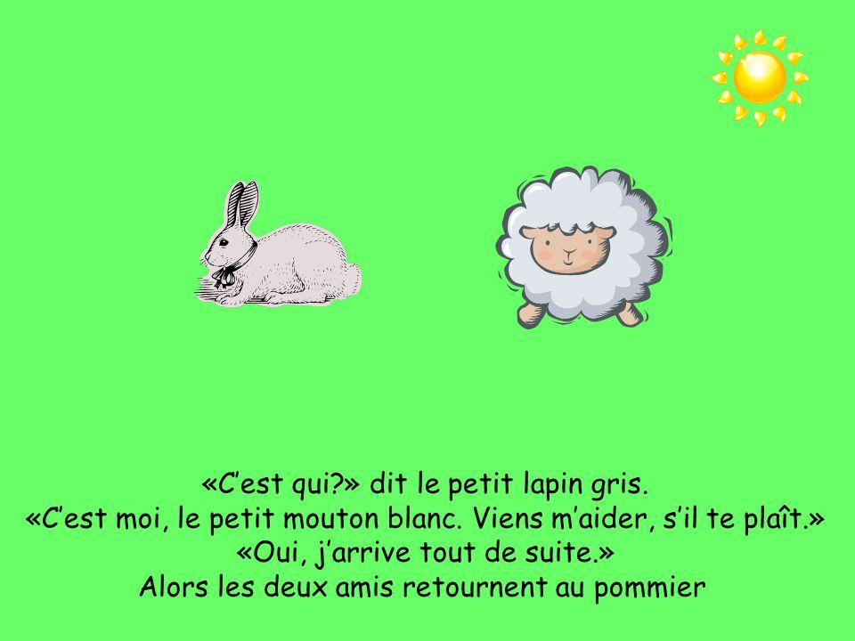 «C'est qui » dit le petit lapin gris.