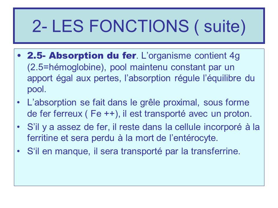 2- LES FONCTIONS ( suite)