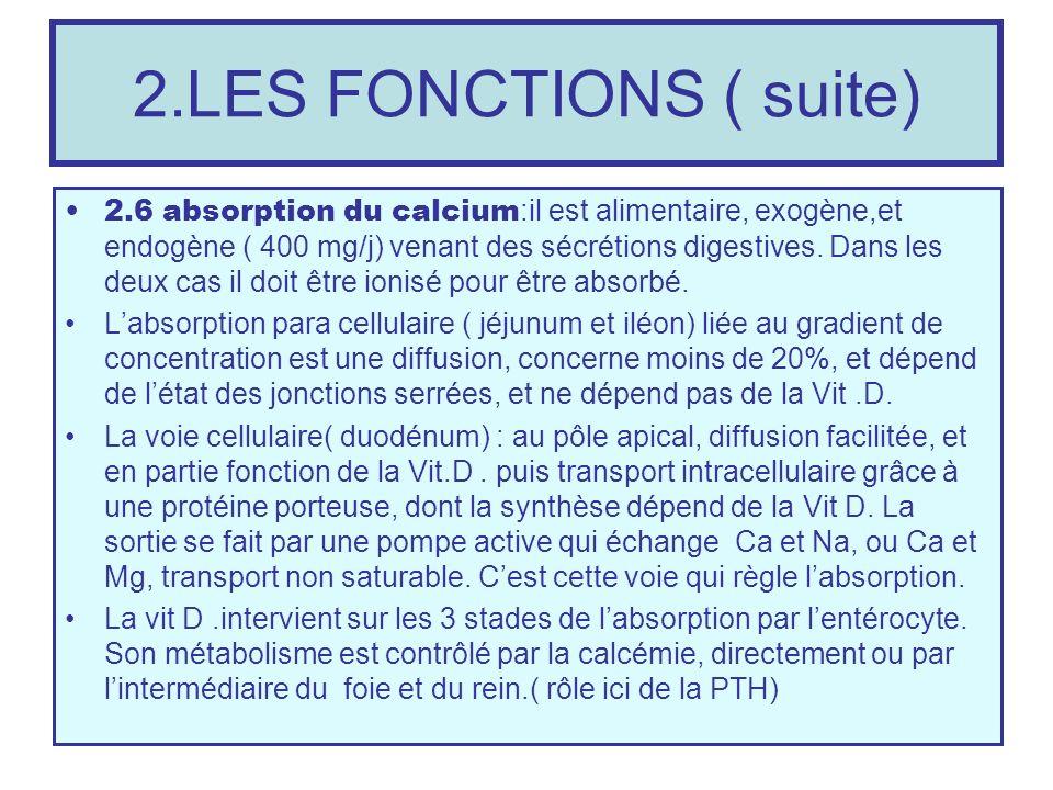 2.LES FONCTIONS ( suite)