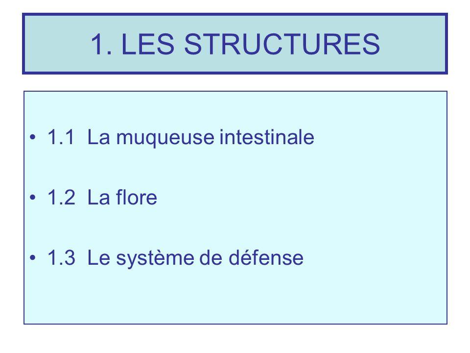 1. LES STRUCTURES 1.1 La muqueuse intestinale 1.2 La flore