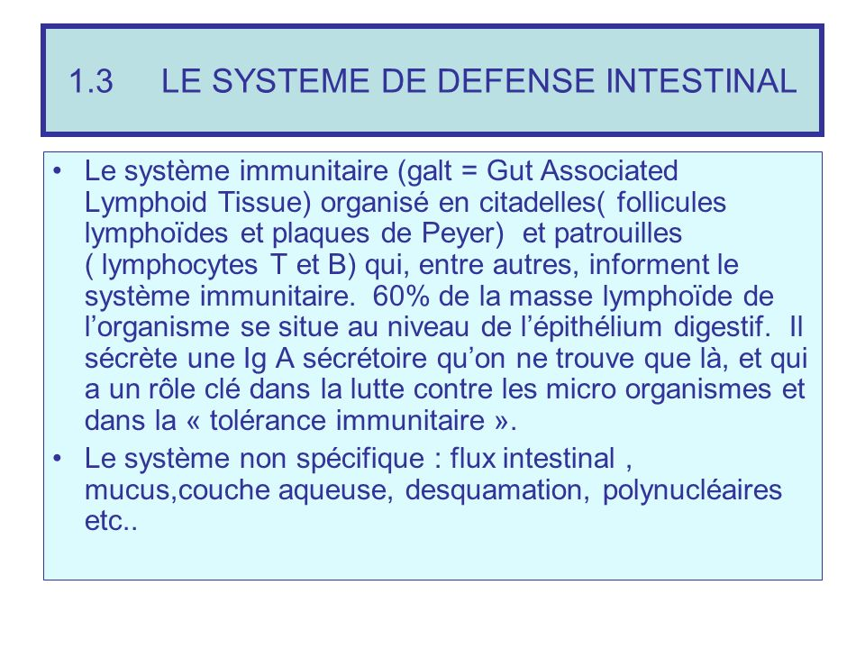 1.3 LE SYSTEME DE DEFENSE INTESTINAL