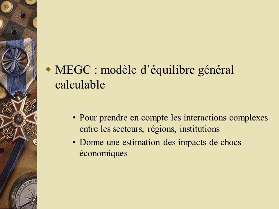MEGC : modèle d'équilibre général calculable