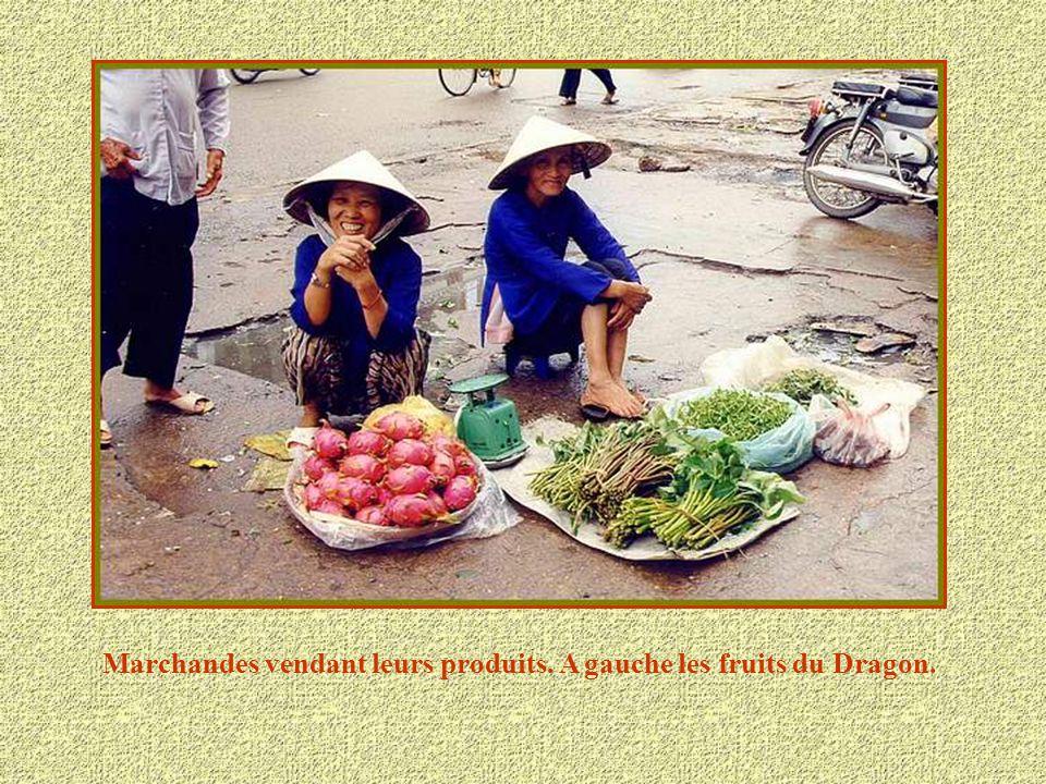 Marchandes vendant leurs produits. A gauche les fruits du Dragon.