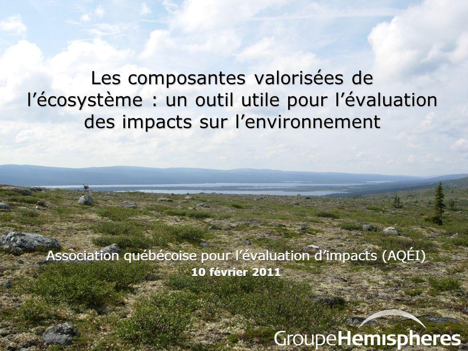 Association québécoise pour l'évaluation d'impacts (AQÉI)
