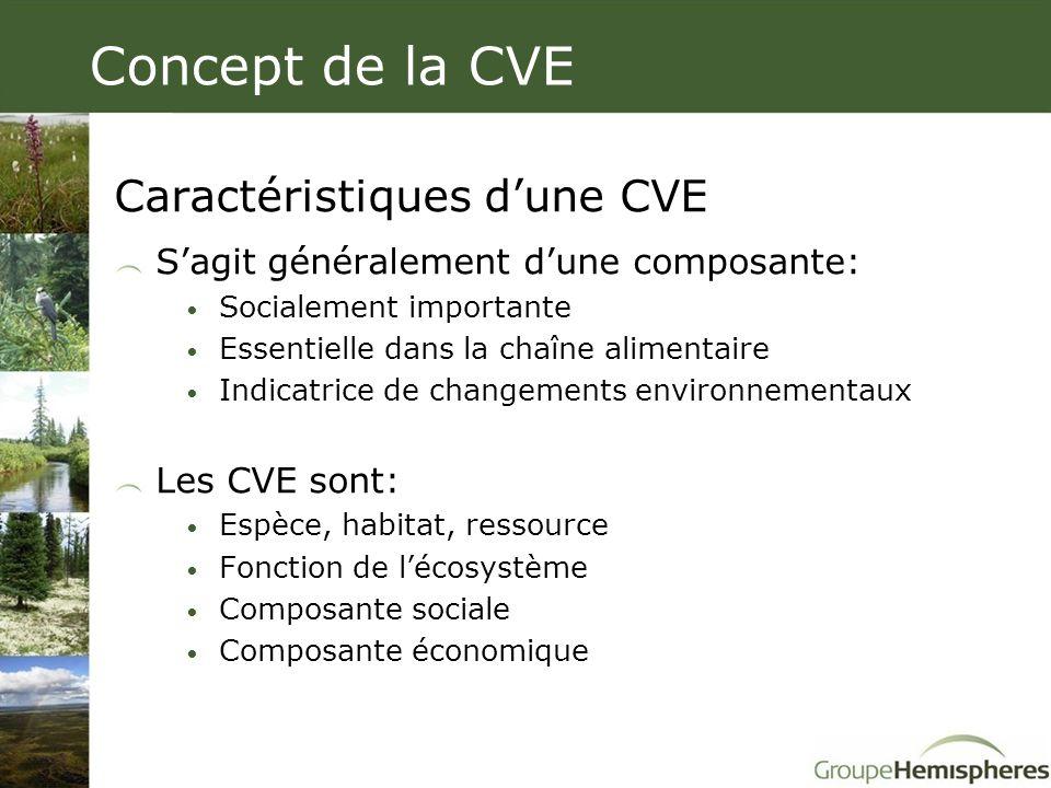 Concept de la CVE Caractéristiques d'une CVE