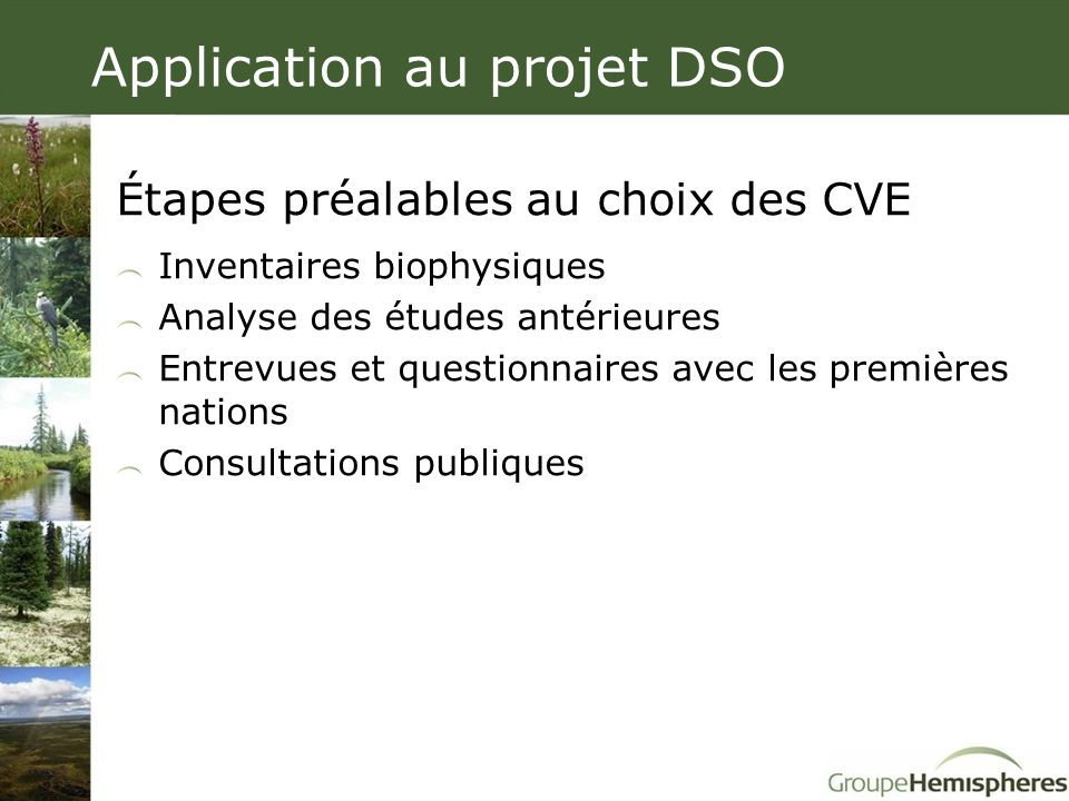 Application au projet DSO