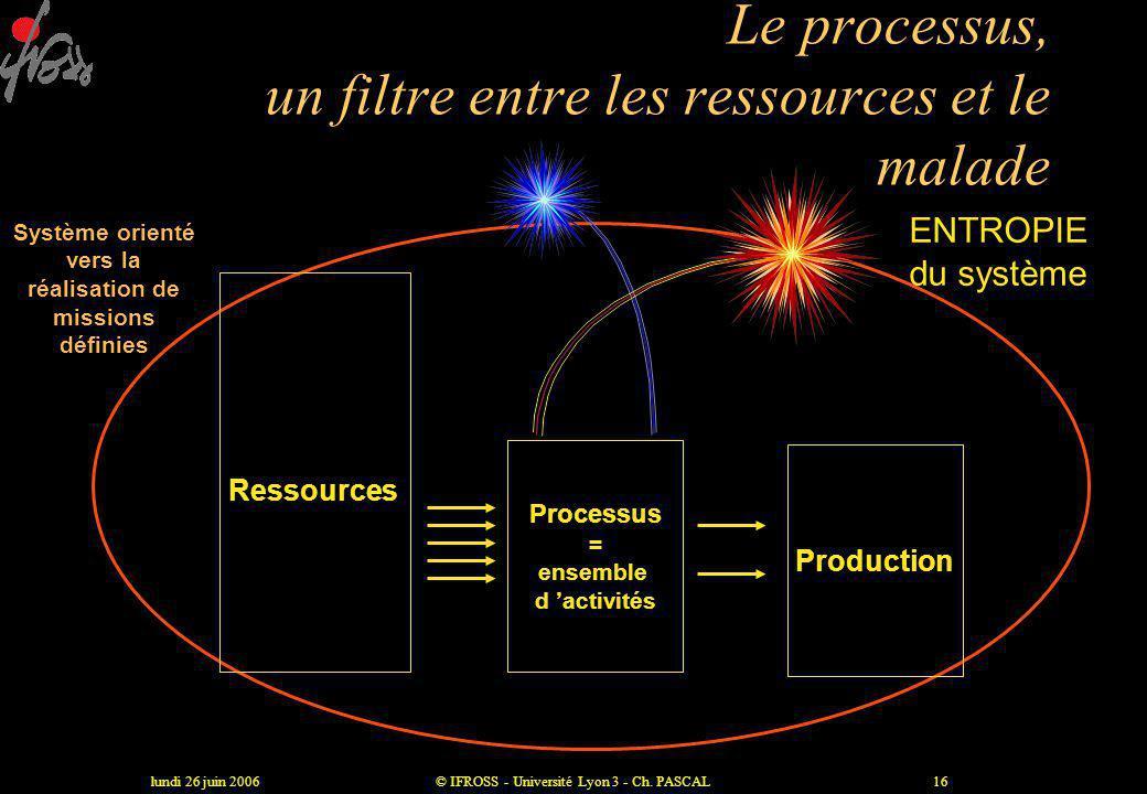 Le processus, un filtre entre les ressources et le malade