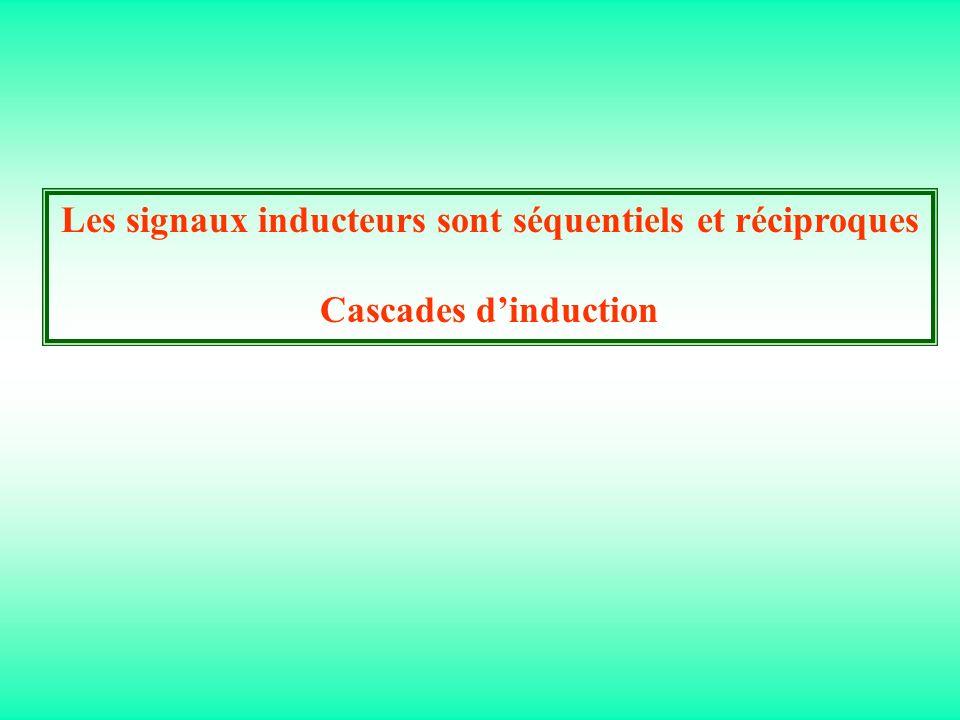 Les signaux inducteurs sont séquentiels et réciproques