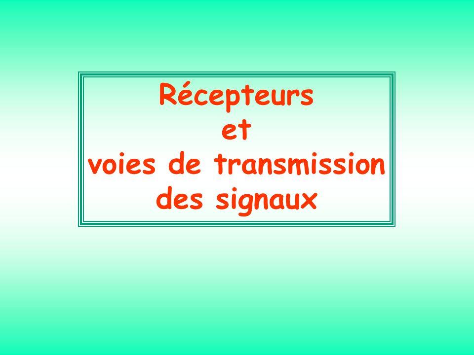 Récepteurs et voies de transmission des signaux